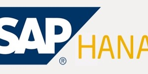 SAP HANA Backup and DR