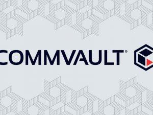 CommVault V11 SP15 vmWare VM Snapshot Status